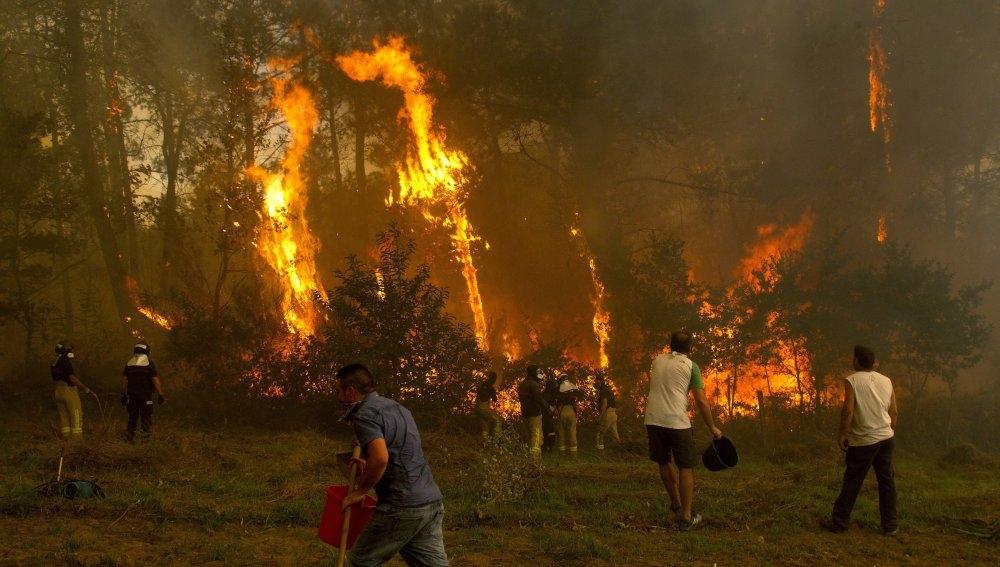 No hay un año en que el Estado español no presencie episodios dramáticos de incendios en sus bosques. Se han convertido en un fenómeno habitual cada época de sequía, pero…