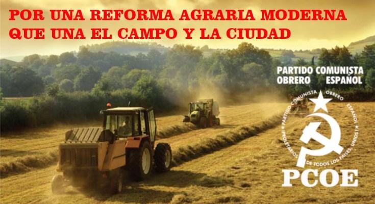 Llevamos unos meses escuchando a la nefasta Presidenta de la Junta de Andalucía, y a sus adláteres CCOO, UGT y CEA, hablar de defender a la aceituna de mesa y…